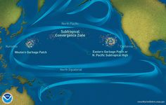 The Great Pacific Garbage Patch is a collection of marine debris in the North Pacific Ocean. It is actually two distinct collections of debris bounded by the massive North Pacific Subtropical Gyre. Ocean Garbage Patch, Great Pacific Garbage Patch, Ocean Cleanup, Marine Debris, Ocean Current, Plastic Pollution, Oceans Of The World, Pacific Ocean, Islands