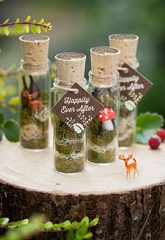 Fairy tale in a bottle, nice design for wedding favors, fill with anything. igniteimaging.com