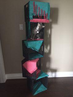 DIY cat tree UNDER $25  Place mats , zip ties , and milk crates !