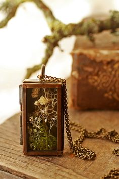 The secret garden necklace features a miniature terrarium encapsulated inside a glass and bronze shadow box. This strange locket was made with