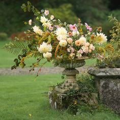 Seasonal autumn urn arrangement of dahlias, anemones and amaranthus Irish Wedding, Autumn Wedding, Amaranthus, Anemones, Dahlias, Flower Farm, Urn, Wedding Flowers, Floral Wreath