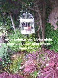 Alter schützt vor Liebe nicht, aber Liebe vor dem Altern. Coco Chanel, Outdoor Structures, Ageing, Happy Life, Quotes, Love