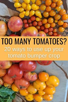You might be tired of seeing tomatoes when your tomato plants are producing too much at the end of summer. Here are 20 ways to use them up and save them to enjoy later. Tips For Growing Tomatoes, Growing Veggies, Vegetable Garden For Beginners, Vegetable Gardening, Gardening Tips, Real Food Recipes, Diet Recipes, Healthy Recipes, Canning Recipes