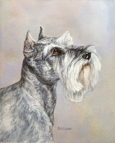 Daily Painters of Arkansas - Contemporary Fine Art International: Mini Schnauzer Debra Sisson Oil Painting Pet Portrait Animal Art Dog Schnauzers, Schnauzer Art, Miniature Schnauzer, Watercolor Animals, Watercolour Paintings, Watercolor Paper, Watercolors, Dog Artwork, Dog Wallpaper