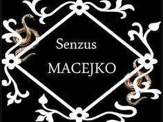 Senzus Macejko,Macejko Music Artists, Playing Cards, Make It Yourself, Youtube, Musicians, Playing Card Games, Youtubers, Game Cards, Youtube Movies