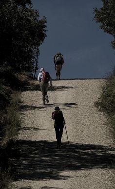 #Peregrinos en el #Camino
