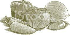 Woodcut Vegetable Still Life royalty-free stock vector art