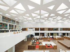 Facultad de medicina, Universidad de Rotterdam