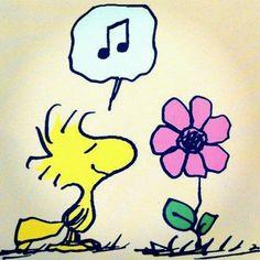 Love Woodstock.