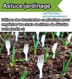 Use Plastic Forks in Garden to Keep out Animals. Prevent animals from getting into your garden by strategically placing plastic forks in the soil. You could also use the fork tines to hold names of plants. Herb Garden Design, Modern Garden Design, Vegetable Garden Design, Vegetable Gardening, Planting Vegetables, Landscape Design, Modern Design, Vegetable Ideas, Veggies