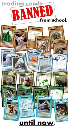 Animal and Plant Adaptations and Biome Trading Cards!   Want to really engage your students while teaching science lessons on biomes? Your students will never forget these trading cards while learning about plants, animals, and adaptations!