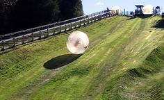 "Bucket-List_New-Zealand_zorb An adrenaline junkie's dream come true, Zorbing has been popular since 1997 and is definitely one of those ""only in New Zealand"" types of experiences to write home about.   Read more: http://www.budgettravel.com/slideshow/budget-travel-travel-photos-affordable-bucket-list-adventures,14028/#ixzz2jsovbQDS"