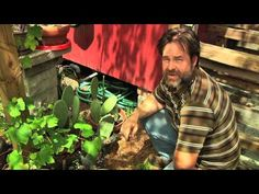 Permaculture Paradise at Alexs Back Yard Garden - Part 1 - YouTube Lots of excellent Info