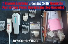 7 Reasons Learning Grooming Skills Should Be Part of Your Preps: Haircuts and Dog Grooming