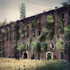 House of trees - Kathrin Broden http://der-kunst-blog.info/1455/kathrin-broden-schoenheit-des-verfalls/