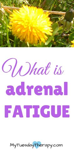 What is Adrenal Fatigue | Adrenal Fatigue Stages | Adrenal Fatigue Symptoms #adrenalfatigue #hpaaxis  via @www.pinterest.com/mytuestherapy