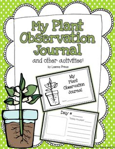 My Plant Observation Journal and other plant activities!