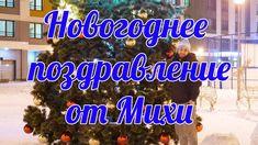 Новогоднее поздравление от Михи Бороды, 1minoxidil ru, Strong Beard