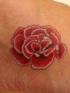 Google Image Result for http://www.floraltattoos.org/wp-content/gallery/birth-flower-tattoos/birth-flower-tattoo-january-carnation-a2613cd927891f34f1b88483d4c94cce5d2064d5.jpg