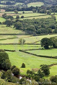 Brecon Beacons National park in Wales, UK have hiked thought the reserve... Such beautiful untouched scenery. Amazing!