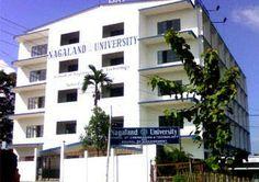 Nagauniv.org.in Nagaland University Recruitment Professor /Assistant Professor vacancy April 2014