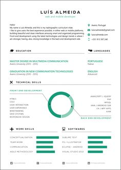 Infographic cv by Luís Almeida, via Behance