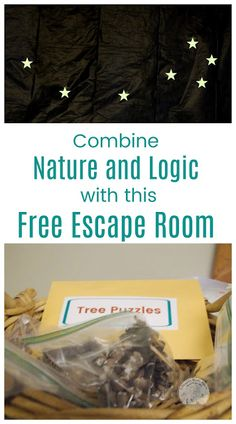 Help kids learn to problem solve with logic through this Nature Themed Escape Room! Perfect for homeschool co-op groups! Escape Room Themes, Escape Room Diy, Escape Room For Kids, Escape Room Puzzles, Kids Room, Indoor Activities For Kids, Kids Learning Activities, Fun Learning, Critical Thinking