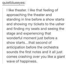 This is too true. I went to Hamilton in Chicago and by the first note I was already sobbing from the fact that I was actually there Drama Theatre, Theatre Nerds, Music Theater, Theatre Problems, Dear Evan Hansen, Make Me Happy, Broadway Shows, Feelings, Words