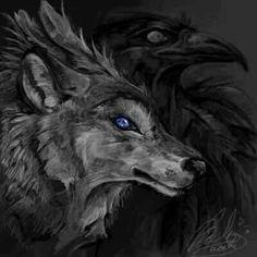 Ravens wolf | Wolf and raven | Pinterest