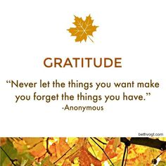 Considering thankfulness during November. Posting 30 #gratitude #quotes for the next month -- here's the first one!