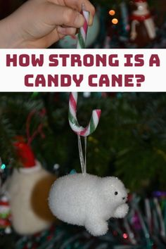 Investigation to discover how strong a candy cane is