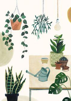 Beautiful illustration of indoor plants. Art And Illustration, Botanical Illustration, Plant Drawing, Guache, Plant Art, Grafik Design, Art Plastique, Botanical Art, Cute Drawings