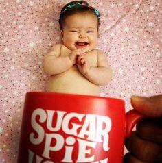Sugar Pie in a mug: @tmcdon
