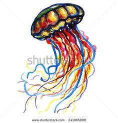 Palpus Stock Photos, Images, & Pictures | Shutterstock