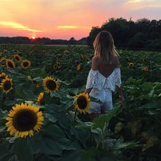 My Favourite Top 5 Wanderlustful Lifestyle Blogs