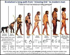 Account Suspended I think part of the pushback against Darwin's theory of evolution wasn't from the actual content of the Old Testament, but from White people back then not wanting to hear that their lineage had monkeys in it. People scoffed at Charles Darwin, Human Evolution Tree, Frise Chrono, Darwin's Theory Of Evolution, Darwin Theory, Early Humans, Forensic Anthropology, Prehistory, World History