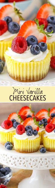 This easy mini cheesecake recipe uses sour cream to make a smooth & creamy filling. A vanilla wafer crust whipped cream makes these a perfect dessert! Cheesecake Recipe Using Sour Cream, Mini Cheesecake Recipes, Mini Desserts, Delicious Desserts, Coconut Desserts, Raspberry Cheesecake, Oreo Cheesecake, Italian Desserts, Apple Desserts