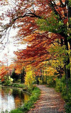Autumn: My favorite season!