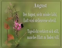Van Tiggelen, Gedichte, Menschen, Leben, Weisheit, Welt, Erde, Gesellschaft, Gefühle, Grüße, Monat August, New Month Wishes, Neuer Monat, New Month Quotes, Fresh Start, Be Yourself Quotes, Shit Happens, Schreiber, Motivation