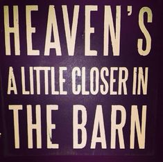 I show show steers and breeding heifers but it always seems as if heaven is just a little bit closer