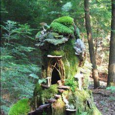 Fairy Moss Mound