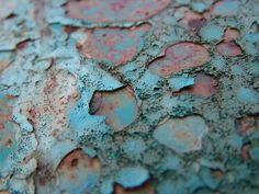 turquoise and rust.