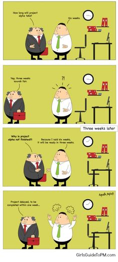 Project management cartoon