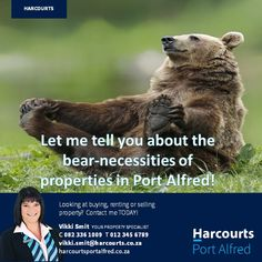 Property For Sale, Bear, Let It Be, Bears