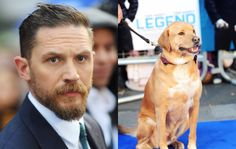 Read Tom Hardy's emotional tribute after his dog Woody dies - NME