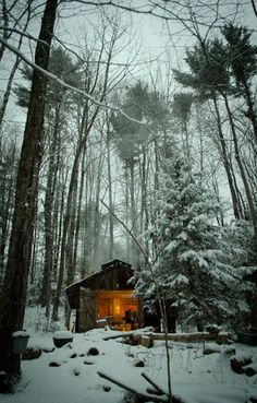 "renamonkalou:  ""Sugar Shack in the Woods"""