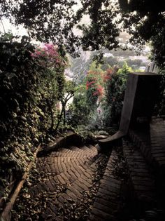 steep winding steps with bougainvillea
