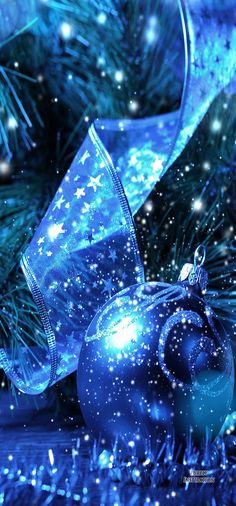 Christmas is Coming | Purely Inspiration