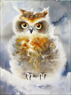 Winter Owl - Original Watercolor Painting 9x7.5 inches