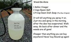 Do it yourself weed killer